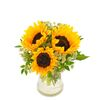 3 Sunflowers with Vase